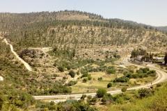Railway-greenline-Battir-Palestine