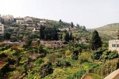 Battir-valley-and-terraces