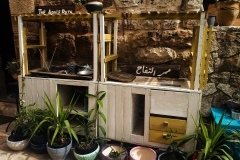 The-pop-up-kitchen-of-the-Heirloom-Seed-Library-at-Dar-Abu-Hassan-gueshouse-in-Battir