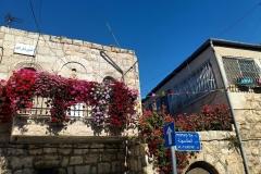 Beit-Safafa-houses