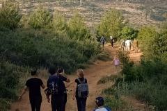 Hiking-in-Palestine-Battir