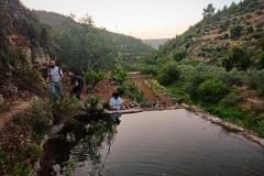 Pool-in-Battir