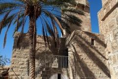 Minaret-palm-tree-mosque-maqam-nabi-musa