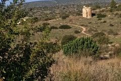 Apse-of-Crusader-church-Saint-Mary-Tel-Maresha