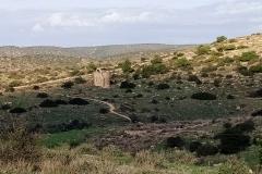 Crusader-chapel-Sanda-Hanna-Tel-Maresha